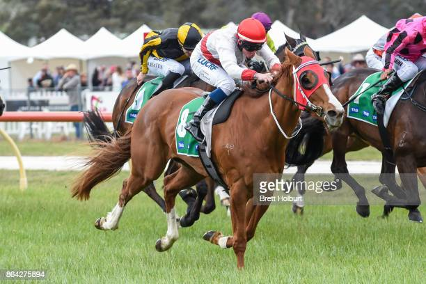 Hospeda ridden by Anthony Boyd wins the Ballarat Conveyancing BM58 Handicap at Avoca Racecourse on October 21 2017 in Avoca Australia