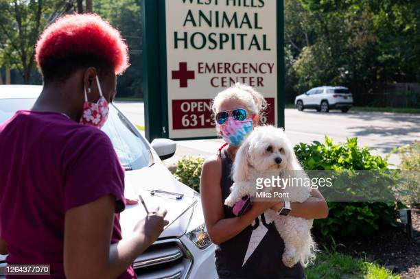 Hospital employee checks in a puppy at the curbside pet drop off at West Hills Animal Hospital as the city continues Phase 4 of re-opening following...