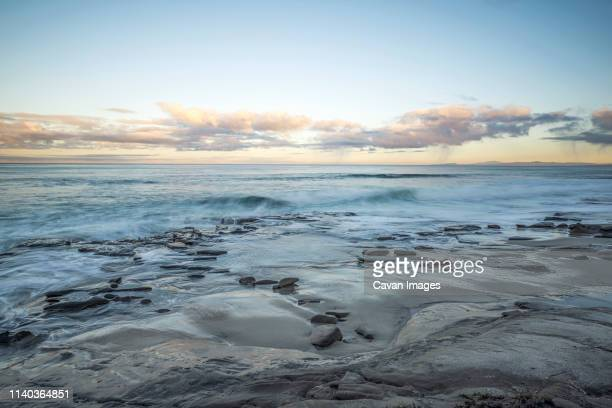 hospital's reef on a december morning - la jolla stock pictures, royalty-free photos & images
