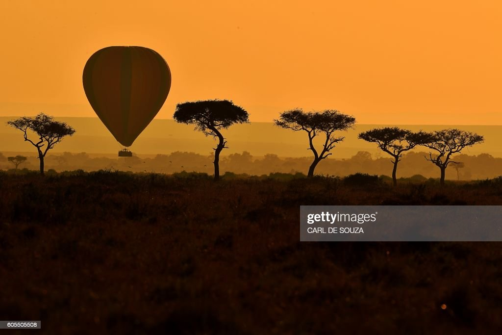 TOPSHOT-KENYA-ANIMALS-MIGRATION : News Photo