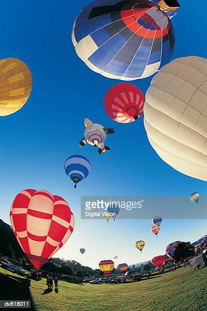 hot air balloon festival - balloon fiesta stock pictures, royalty-free photos & images