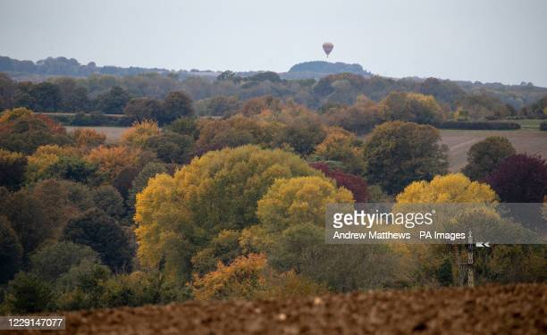 Hot air balloon flies over trees near to Ropley in Hampshire.