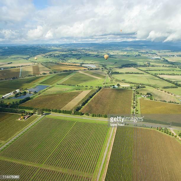 Hot air ballooning over vineyards, Australia