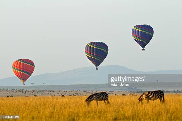 Hot air balloons at sunrise over plains