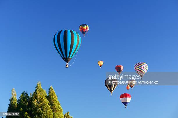 hot air balloons flying - hamilton new zealand stock pictures, royalty-free photos & images