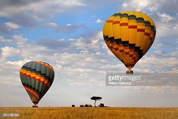 Hot air balloons landing in the Serengeti