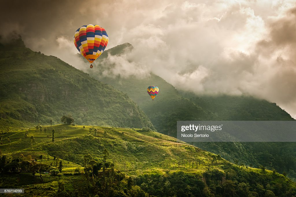 Hot air balloons over tea plantations : Stock Photo