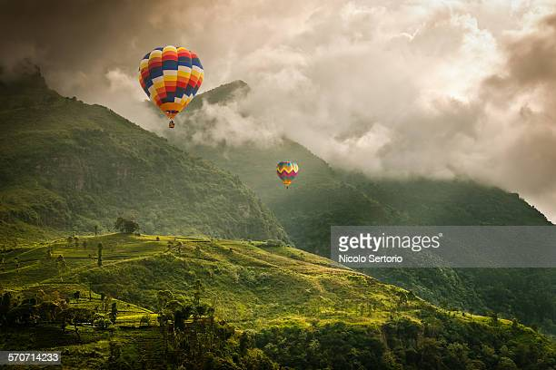 Hot air balloons over tea plantations