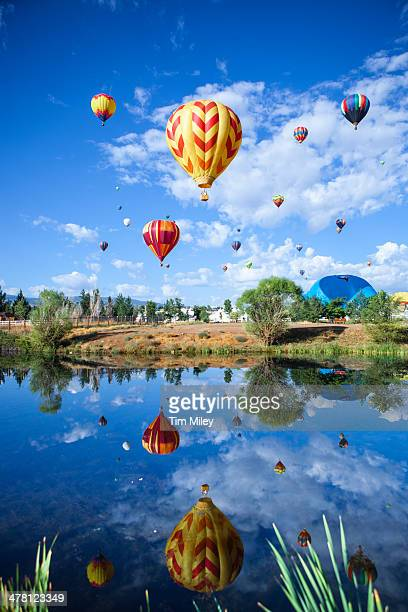 Hot Air Balloons Rising Over a Pond