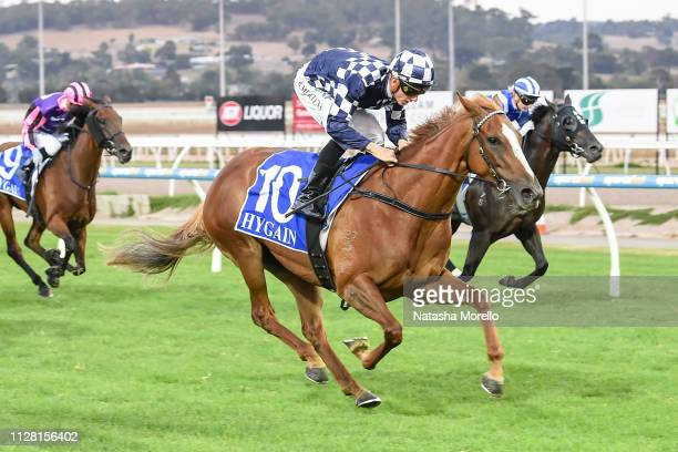 Hot Blonde ridden by Beau Mertens wins the Magic Millions Adelaide Yearling Sales Maiden Plate at Racingcom Park Racecourse on February 28 2019 in...