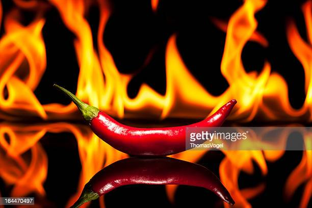 Hot Chili Pepper - Fire Flame
