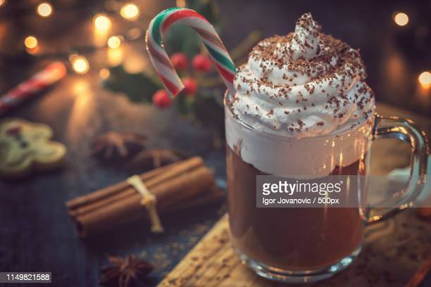 hot chocolate for the christmas - theobroma imagens e fotografias de stock