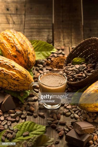 hot schokolade - theobroma stock-fotos und bilder