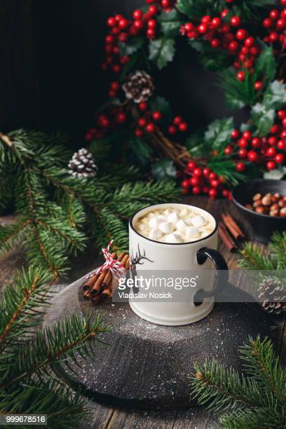 Hot chocolate with marshmallows and cinnamon. Cozy Christmas drink