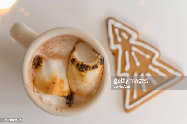 hot cocoa with gingerbread cookie - montclair stockfoto's en -beelden