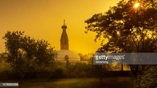 hot evening in buddhist temples in lumbini. nepal - lumbini nepal stock pictures, royalty-free photos & images