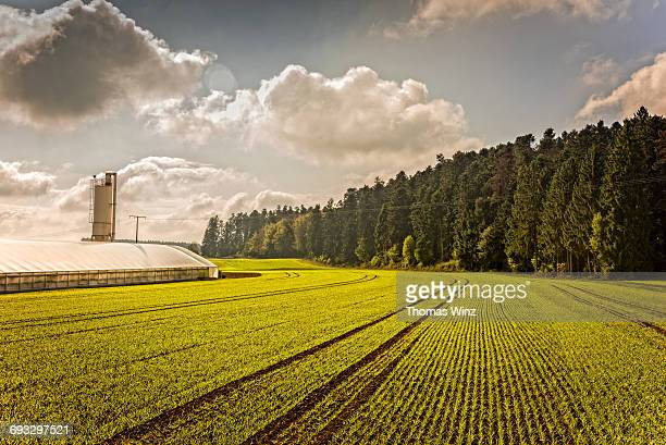 Hot house and Agricultural field