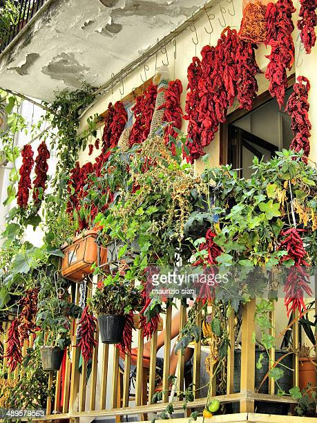 hot peppers (italy)