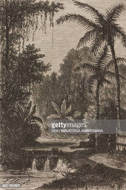 Hot springs at Lake Tondano Sulawesi island drawing by Hubert Clerget from The Malay Archipelago 18611862 by Alfred Russell Wallace from Il Giro del...