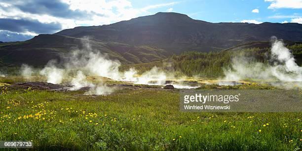 Hot springs in Haukadalur