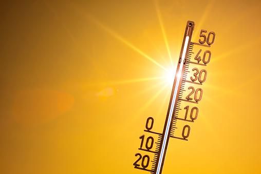 Hot summer 993697682
