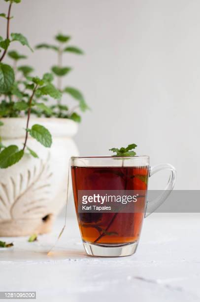 hot tea on a transparent cup with mint plant on a rustic table and white background - steeping stock pictures, royalty-free photos & images