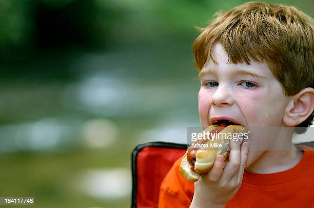 Hotdog #2
