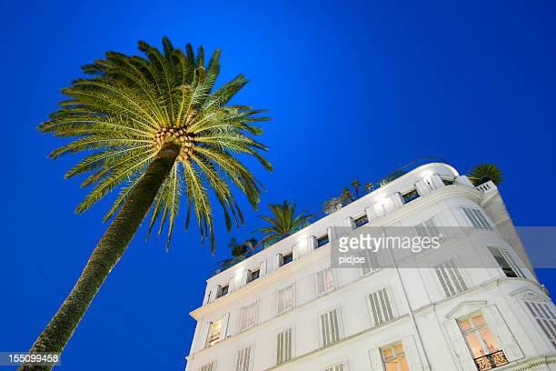 façade de l'hôtel et de palmier au coucher du soleil à cannes - cannes photos et images de collection