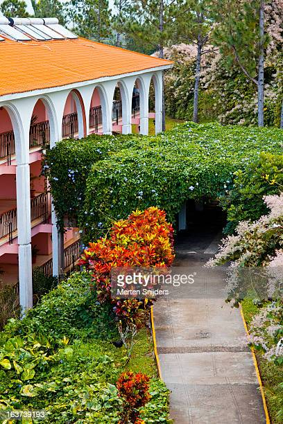 hotel los jazmines - merten snijders stock pictures, royalty-free photos & images