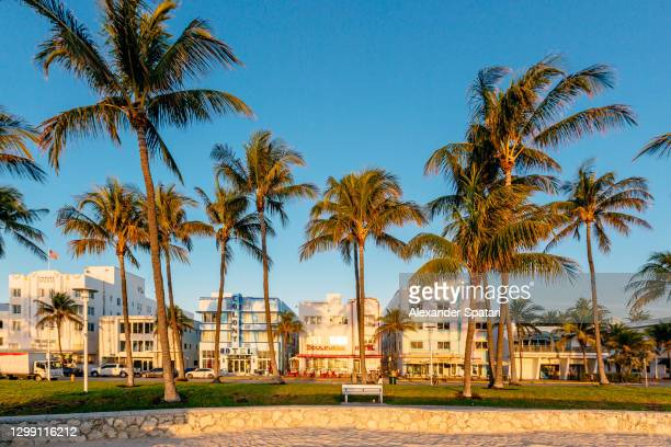 hotels along ocean drive on a sunny morning, miami beach, florida, usa - gulf coast states stock pictures, royalty-free photos & images