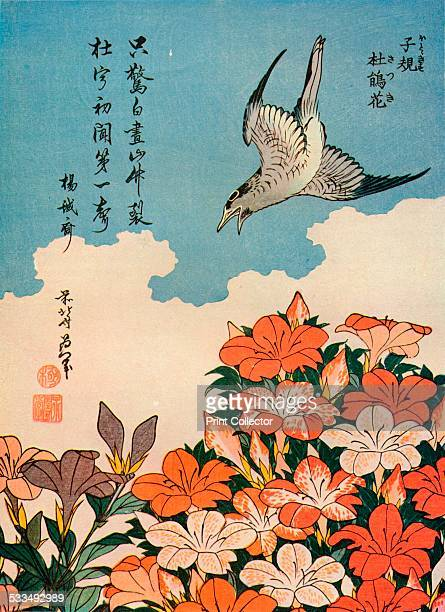 Hototogisu satsuki c1828 Birds and flowers small cuckoo and azalea with a poem Nishikie on paperFrom The Studio Volume 112 [London Offices of the...
