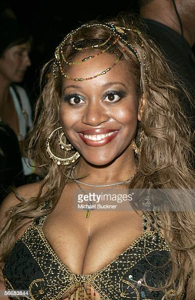 Safari flavor of love boobs for pussy