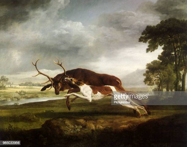 Hound Coursing a Stag Stubbs George