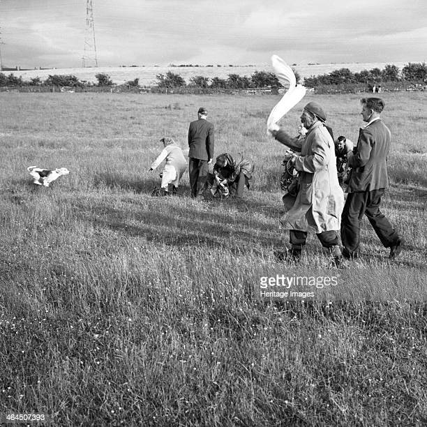 Hound Trailing one of Cumbria's oldest and most popular sports Keswick 2nd July 1962 Hound Trailing takes place over moorland fields and fells with...