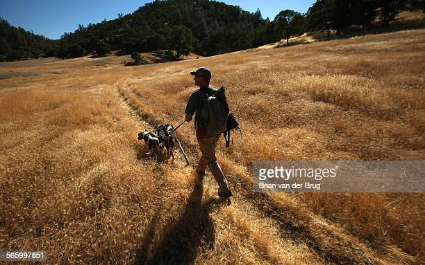 Houndsman Josh Brones heads down a grassy trail near Cache Creek with his hunting dogs June 19 2012 in Yolo County. The California Legislature is...
