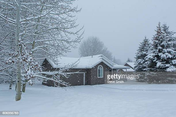 House and snowy front yard