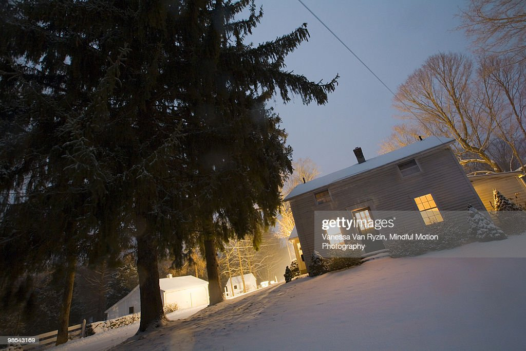 House and Trees : Stock Photo