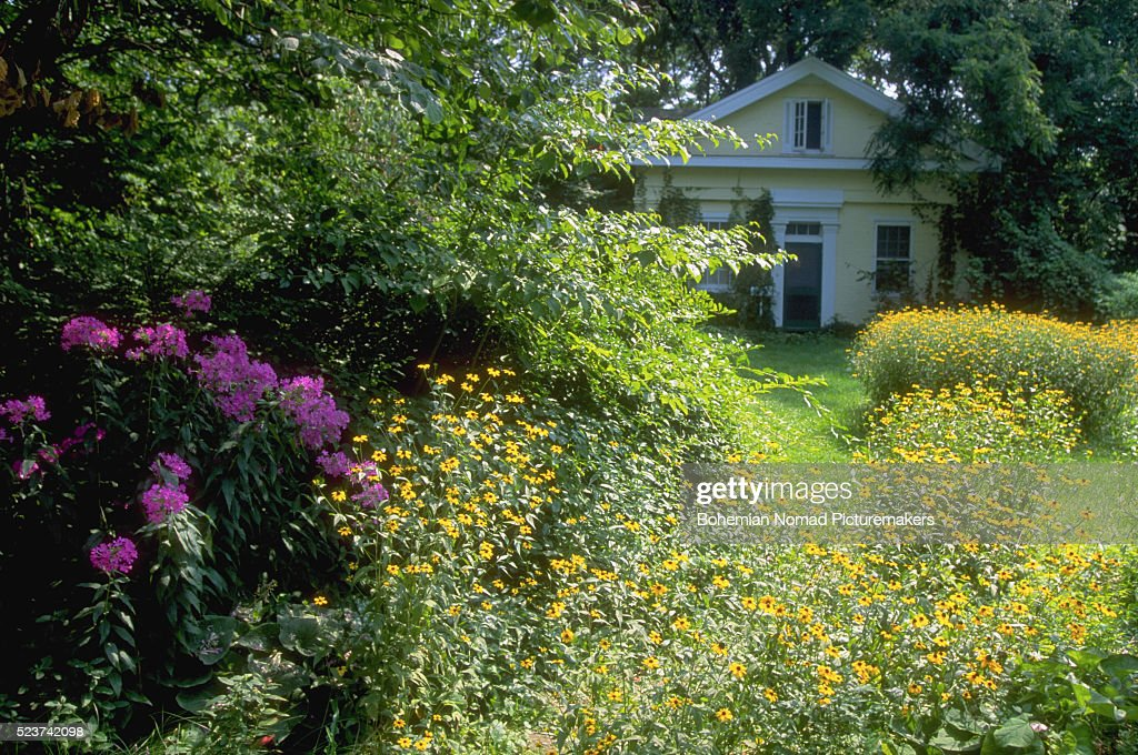 House And Wildflower Garden : Stock Photo