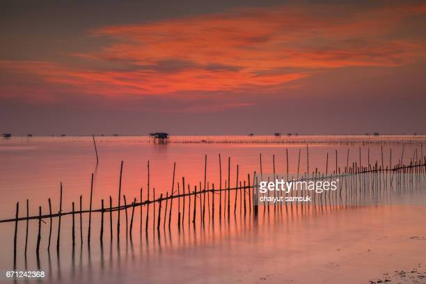 house built on stilts in the middle of sea at sunrise - provinz chonburi stock-fotos und bilder