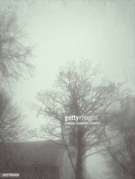house covered in fog - pomorskie province stock photos and pictures