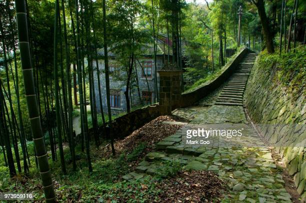 house in bamboo grove, moganshan, zhejiang, china - zhejiang province stock pictures, royalty-free photos & images