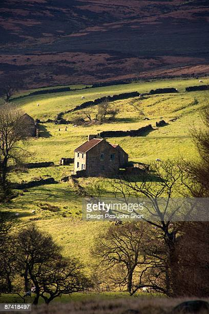 house in countryside, yorkshire moors, england - north yorkshire stock pictures, royalty-free photos & images