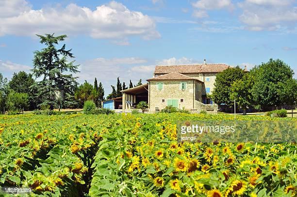 Maison de Provence avec tournesols
