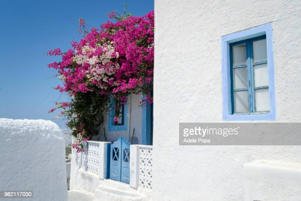 House in white and blue