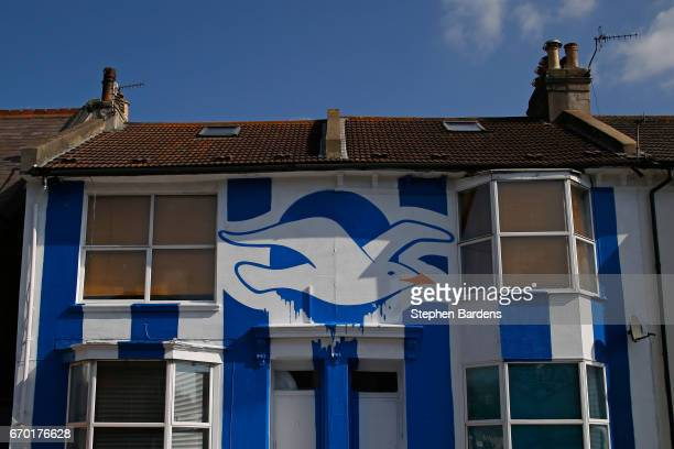 A house is decorated in Brighton Hove Albion's colours and a giant seagull to celebrate Brighton Hove Albion's promotion to the Premier League on...