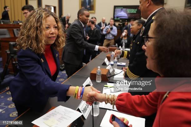 House Judiciary Committee member Rep Lucy McBath greets George Mason University's Antonin Scalia Law School Professor Joyce Lee Malcolm before a...