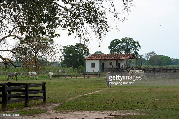House of the workers at the Campo Grande facienda with approaching storm near the Pixaim River in the northern Pantanal Mato Grosso province of Brazil