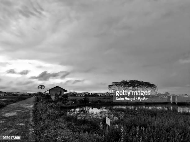 house on field against sky - west kalimantan stock pictures, royalty-free photos & images