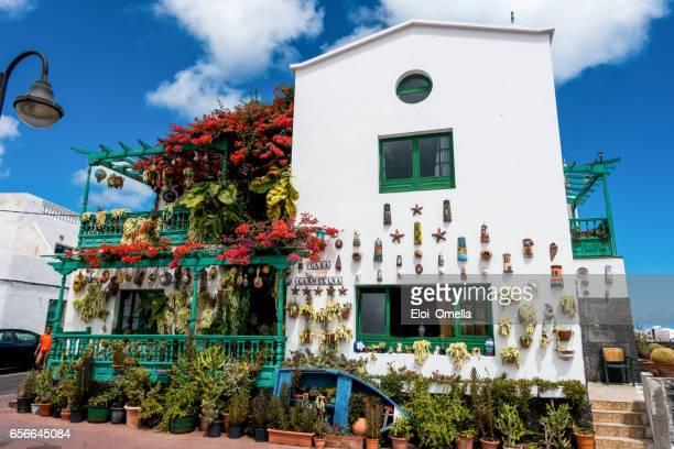 huis sieraad zee planten lanzarote punta mujeres cactus - mujeres fotos stockfoto's en -beelden
