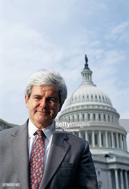 House Speaker Newt Gingrich speaks to the press about term limits at the US Capitol